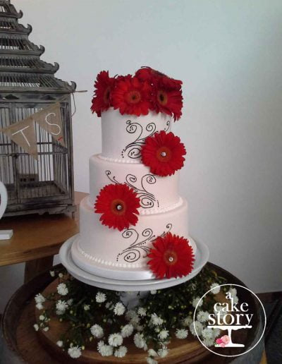 Togryersvlei, Jacobsbaai wedding, red and black cake